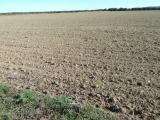 Visita a los agricultores en Guadalajara, Zaragoza y Zamora