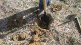 Protocolo de la toma de muestras de suelos del proyecto