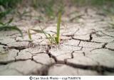 España vive el invierno más seco de los últimos 60 años