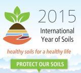 Este 2015 se celebra el año internacional del suelo