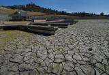 La lucha contra el cambio climático se vuelca en la tierra