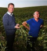 Una agricultura rentable sin pesticidas - EL PAIS